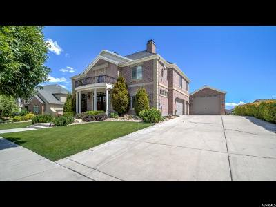 Eagle Mountain Single Family Home For Sale: 8164 N Simpson Springs Rd W
