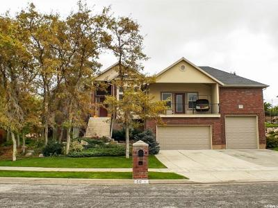 Ogden Single Family Home For Sale: 1517 E Lakeview Way