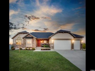 West Valley City Single Family Home For Sale: 7088 W Harding Dr