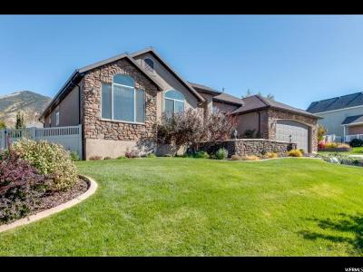 Tooele Single Family Home For Sale: 607 S Haylie Ln E