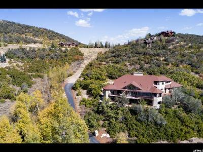 Park City Single Family Home For Sale: 2280 Bear Hollow Dr #10