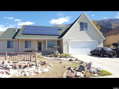 Santaquin Single Family Home For Sale: 337 S 800 E