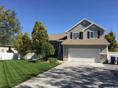 Grantsville Single Family Home For Sale: 903 S Poplar Ln E