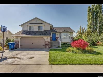 Pleasant Grove Single Family Home For Sale: 955 W 550 N