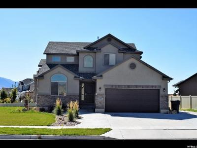 Spanish Fork Single Family Home For Sale: 1986 E 80 N