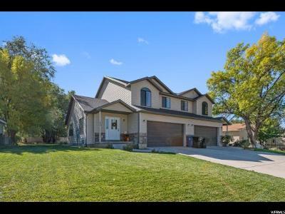 Spanish Fork Single Family Home For Sale: 572 E 300 S