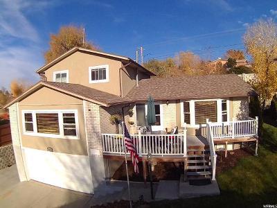 Sandy Single Family Home For Sale: 9919 S Lannae Dr E