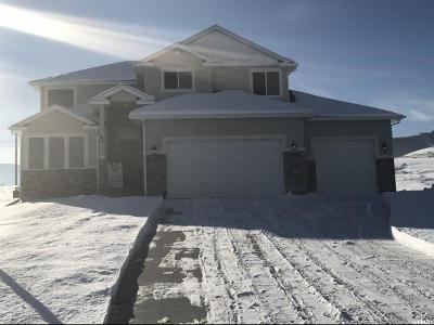 Wellsville Single Family Home For Sale: 60 W 1550 S