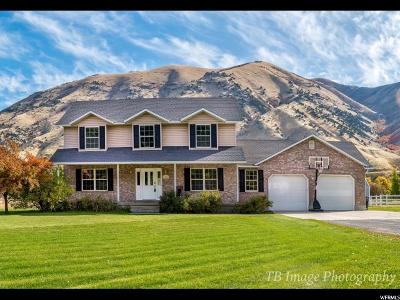 Nibley Single Family Home For Sale: 4820 Hollow Rd