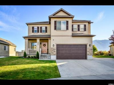 Stansbury Park Single Family Home For Sale: 6620 N Malachite Way