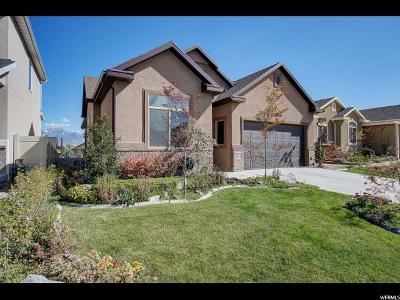 Riverton Single Family Home For Sale: 12907 S Wild Mare Way W