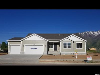 Mapleton Single Family Home For Sale: 457 S Doubleday St #14