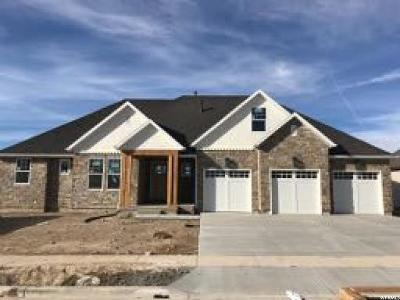 American Fork Single Family Home For Sale: 953 E 1000 N #2