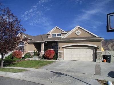 Stansbury Park Single Family Home For Sale: 444 Covington Cir