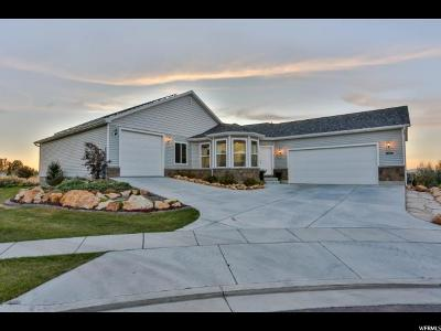 Perry Single Family Home For Sale: 1035 W 2325 S