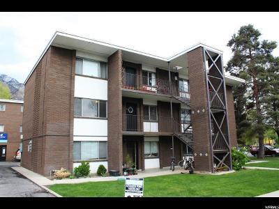 Provo Multi Family Home For Sale: 442 N 400 E
