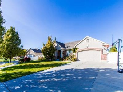 Riverton Single Family Home For Sale: 4546 W Park Hollow Ln