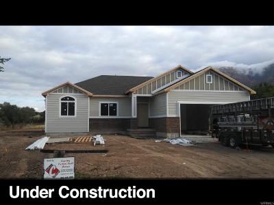 Brigham City Single Family Home For Sale: 774 E 650 S