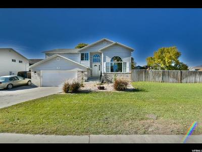 Orem Single Family Home For Sale: 1744 W Springwater Dr S