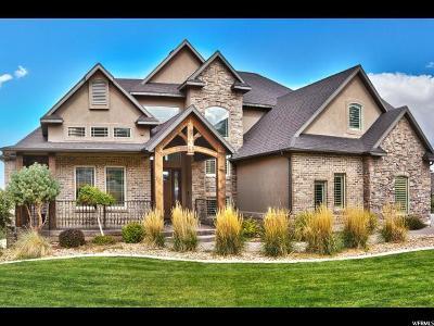 Tooele Single Family Home For Sale: 725 E Oakridge Dr