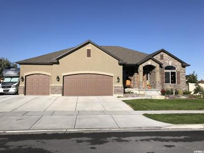 Stansbury Park Single Family Home For Sale: 5477 N Lanyard Ln E