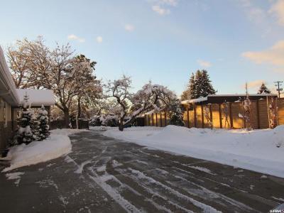 Salt Lake City Single Family Home For Sale: 3196 E Millcreek Canyon Rd