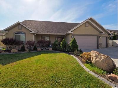 West Valley City Single Family Home For Sale: 6753 W Bridge Point Cir S