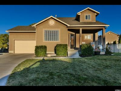 Tooele Single Family Home For Sale: 244 N 250 W