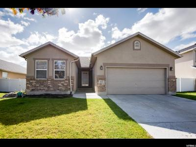 West Valley City Single Family Home For Sale: 5057 W Eagle Rock Way S