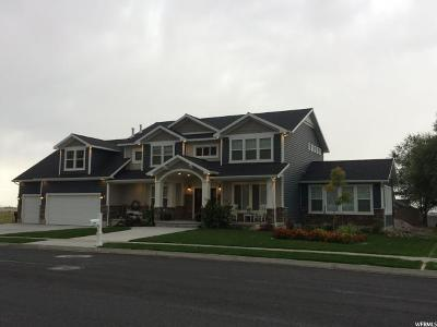 Brigham City Single Family Home For Sale: 1022 S 950 W