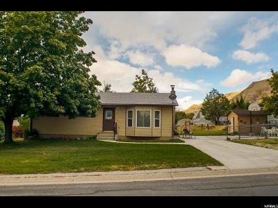 Willard Single Family Home For Sale: 141 E 200 S
