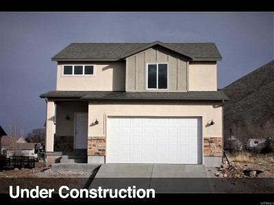 Tooele Single Family Home For Sale: 1173 S 900 W #6176