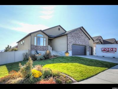 Riverton Single Family Home For Sale: 4427 W Black Canyon Rd S