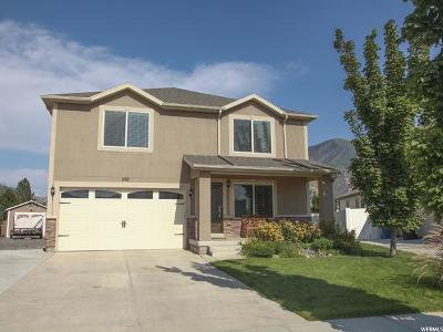 Spanish Fork Single Family Home For Sale: 1137 S 2130 E