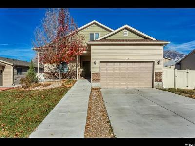 Orem Single Family Home For Sale: 143 E 800 S