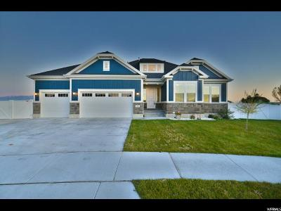 West Valley City Single Family Home For Sale: 5005 W Fenland Ct