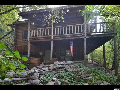 Ogden Single Family Home For Sale: 415 Ogden Cyn