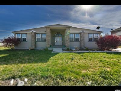Grantsville Single Family Home For Sale: 162 E Harvest Ln