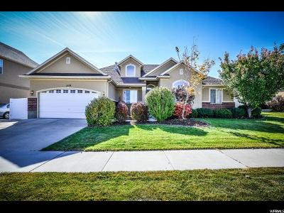 Riverton Single Family Home For Sale: 5159 W Crimson Patch Way