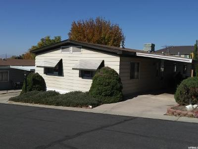 Orem Single Family Home For Sale: 1084 W 490 N