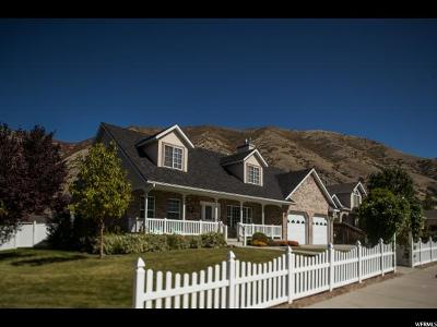 Springville Single Family Home For Sale: 1317 E 200 S
