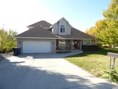 Payson Single Family Home For Sale: 376 S 600 E