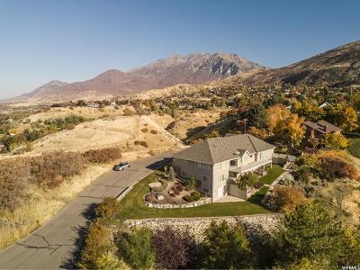 Provo Single Family Home For Sale: 3838 N Quail Summit Dr E
