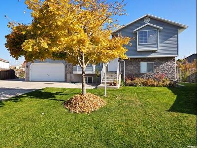 West Valley City Single Family Home For Sale: 5053 W Teal Vista Cir S