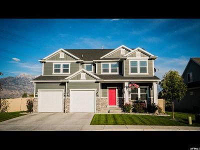 Lehi Single Family Home For Sale: 2007 S 900 E