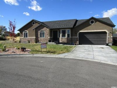Payson Single Family Home For Sale: 238 S 630 E