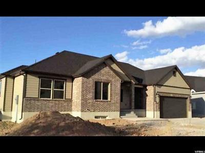 Santaquin Single Family Home For Sale: 141 E 850 S