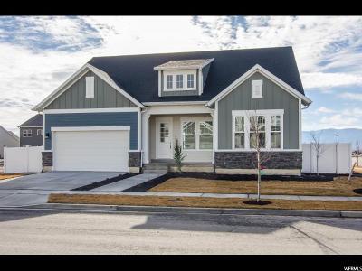 Lehi Single Family Home For Sale: 3379 N Cramden Dr N