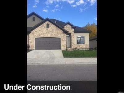 Provo Single Family Home For Sale: 3998 N 60 E #8