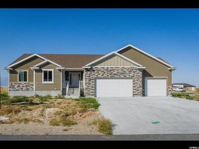 Erda Single Family Home For Sale: 4687 Cochrane